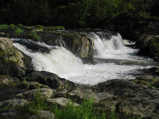 Cenarth Falls and Car Park: Across part of the falls