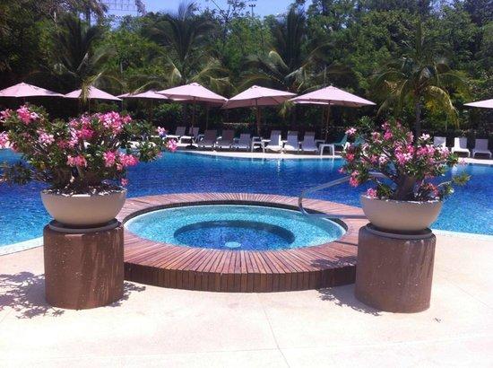 Azul Ixtapa Grand Spa & Convention Center : ALBERCA PRINCIPAL CON JACUZZI