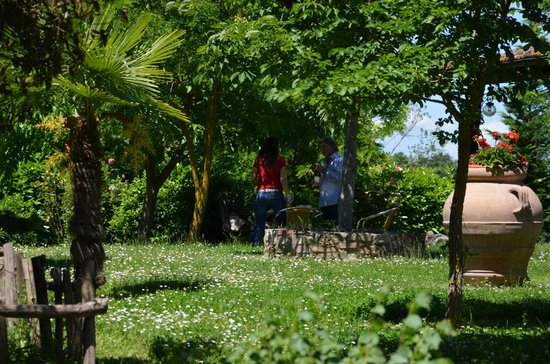 Bed & Breakfast Le Rondini: Giardino del B&B Le Rondini