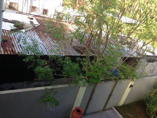 Casa De Leela : Ausblick von Balkon