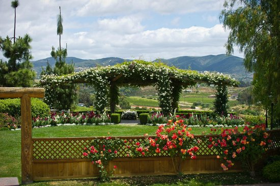 South Coast Winery Resort Spa Rose Arbor Perfect For Weddings Private Events
