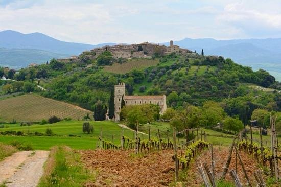 Franco Wine Tour Experience: patchwork
