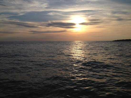 Cape May Whale Watcher: Sunset