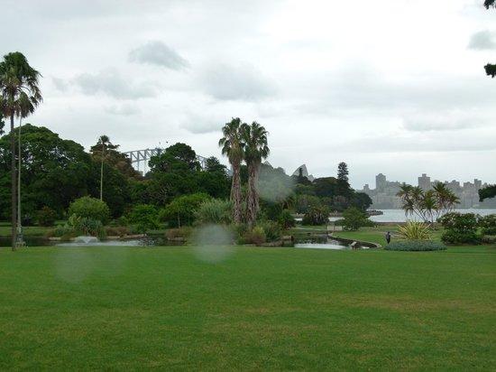 The Opera House to the Botanic Gardens Walk: the Botanic Gardens