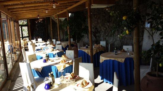 Holidays Fico d'India: La terrazza ristorante 2
