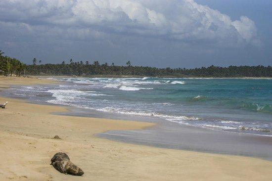 Zoetry Agua Punta Cana: Strand