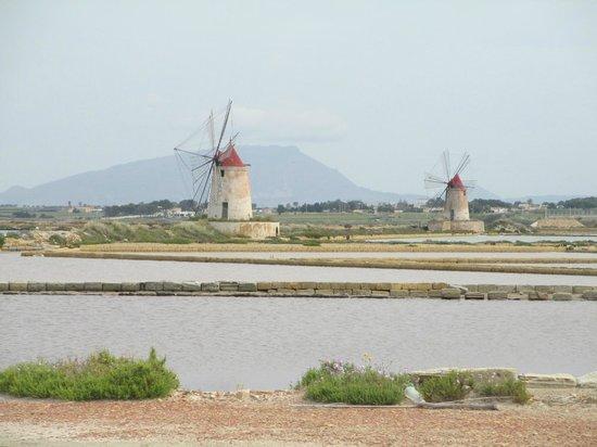 Isola di Mozia (Mothia)/ San Pantaleo: I mulini a vento delle saline sullo Stagnone di Marsala