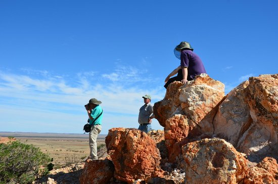 Arid Areas Day Tours : Painted Desert