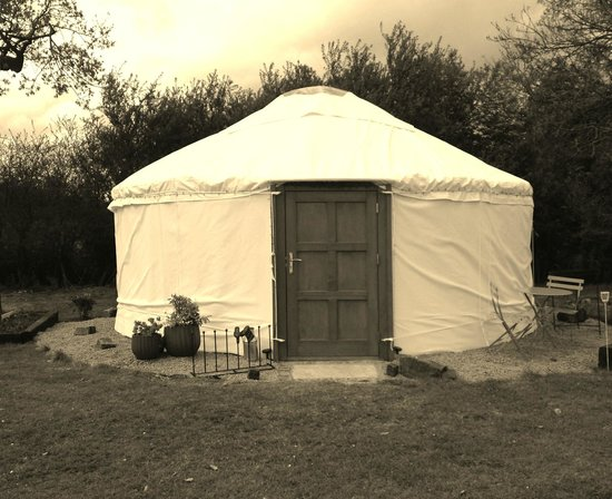 The Little Yurt Meadow: Our beautiful yurts!