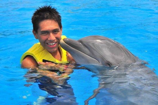 Dolphinaris Riviera Maya Park: Fascinante