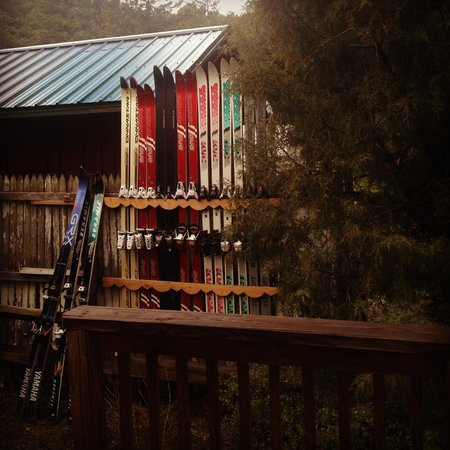 Dripping Springs Resort : Privaski Fence