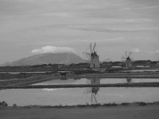 Isola di Mozia (Mothia)/ San Pantaleo : Le saline dello Stagnone