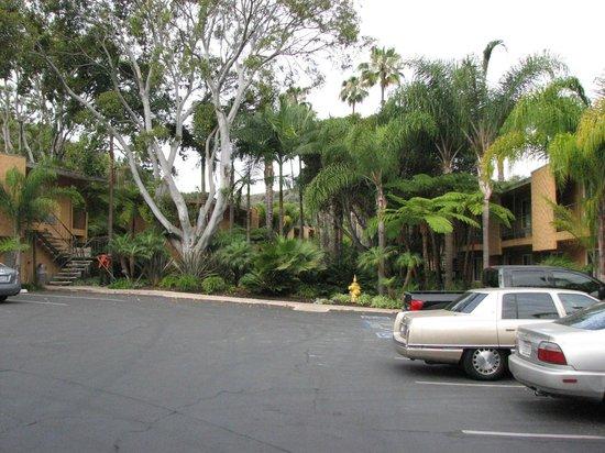 Best Western Seven Seas: Area near hotel room