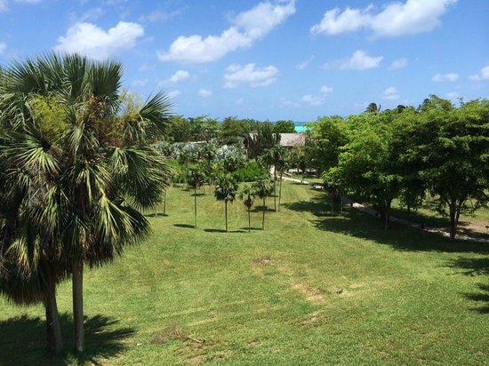 COMO Parrot Cay, Turks and Caicos: Lawn