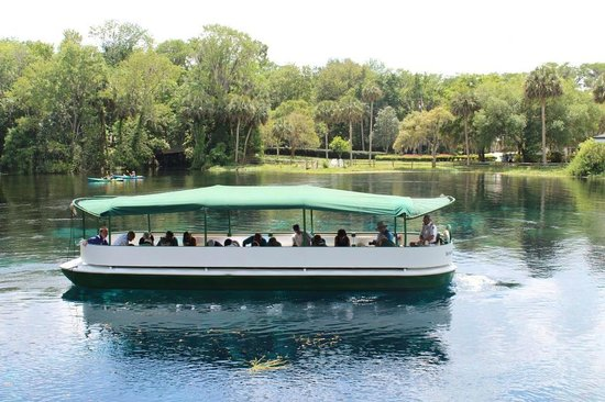 Silver Springs State Park: Glass Bottom Boat