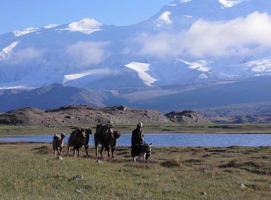 Akto County, China: Kirgise mit Kamelen am Karakul vor dem Kongur
