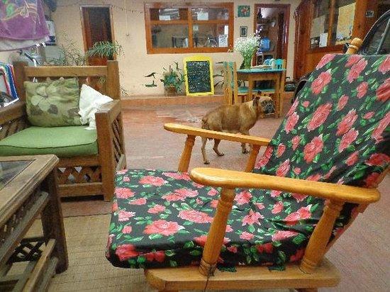Hostal Casa Gaia: todo me encanto tambien la perrita y sus cachorros =)