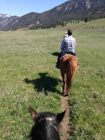 Jake's Horses: The meadow after crossing Porcupine Creek