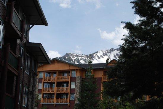Juniper Springs Resort: The View