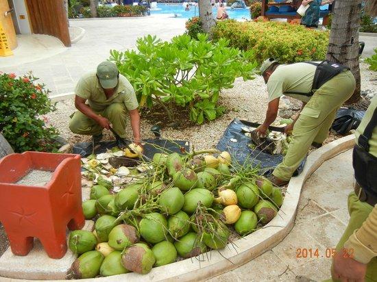 IBEROSTAR Paraiso Del Mar: Coco