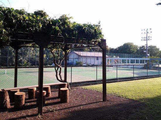 Laforet Resort Shuzenj: Dコートで、右奥に子供遊具施設が見えます。