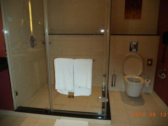 Hilton Warsaw Hotel & Convention Centre : Walkin shower