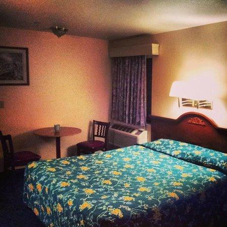 Aloft Sunnyvale : Deluxe room