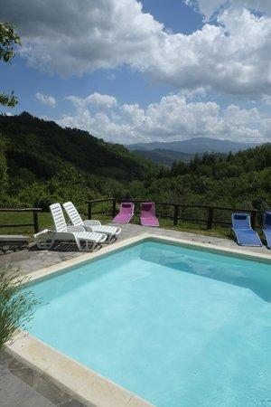 Bio Agriturismo Il Vigno: piscina