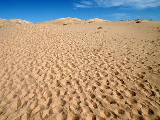 Mojave National Preserve: Kelso Dunes