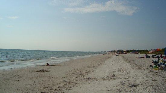 Barefoot Beach Preserve: Beach