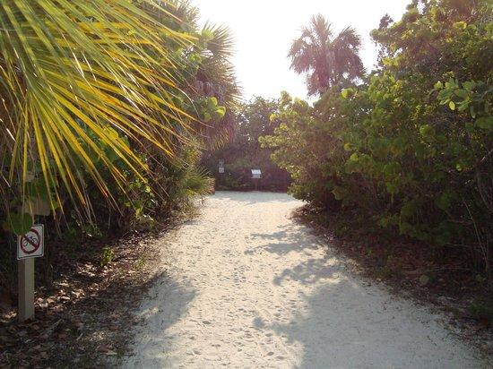 Barefoot Beach Preserve: Walkway to beach