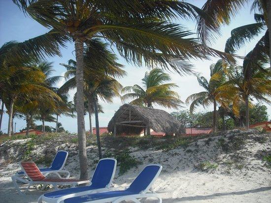 Iberostar Daiquiri: Plenty of deckchairs along the beach