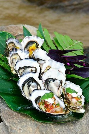 Ellis Beach Bar & Grill: We are home to the famous $1 Oyster Sunday - from 1pm til 4pm. Great range of flavours available