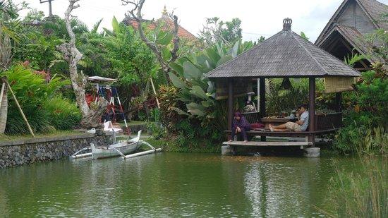 Campuhan Ridge Walk: Bali huts
