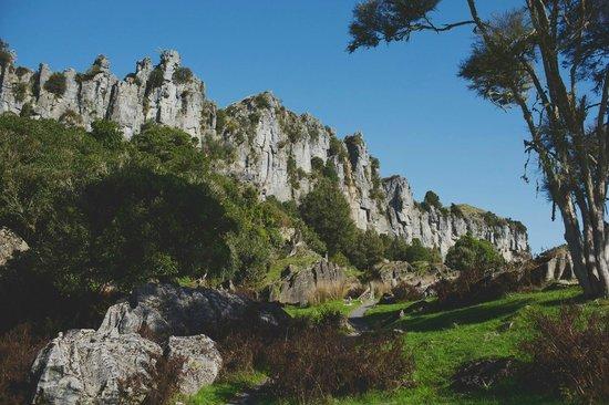 Hairy Feet Scenic Film Location Tour Waitomo: amazing