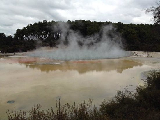 Regent of Rotorua : Waiotapu is close by