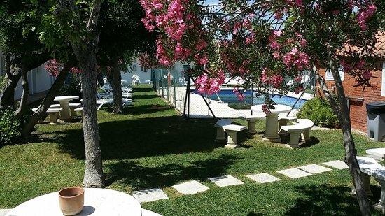 Hostal Las Cumbres: Garten