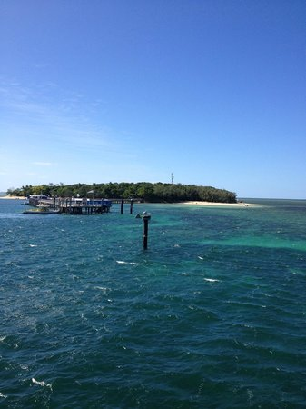 Big Cat Green Island Reef Cruises - Day Tour: Arriving at Green Island