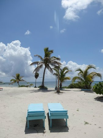 Blackbird Caye Resort: Gorgeous