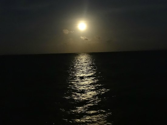 Blackbird Caye Resort: Moon