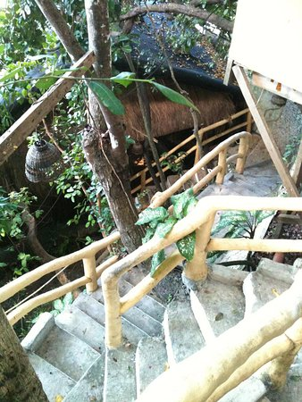 Spider House Resort: .. stairway to heaven!!!