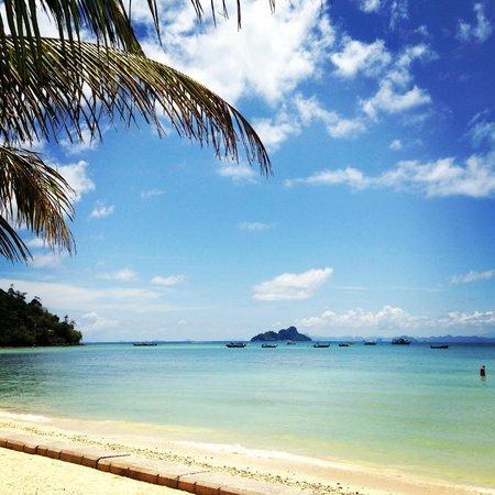 Phi Phi Island Village Beach Resort : x