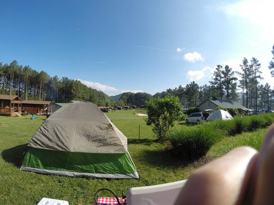 Yogi Bear's Jellystone Park Camp-Resort Luray: Primitive Campsite