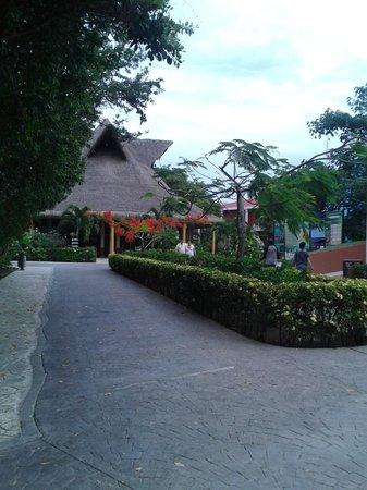 Sandos Caracol Eco Resort: Uno de los caminos que nos llevaban al Snack Bar del hotel