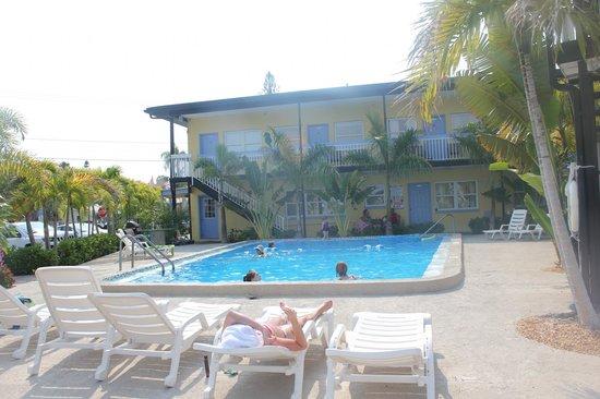 Surf n' Sand: clean pool
