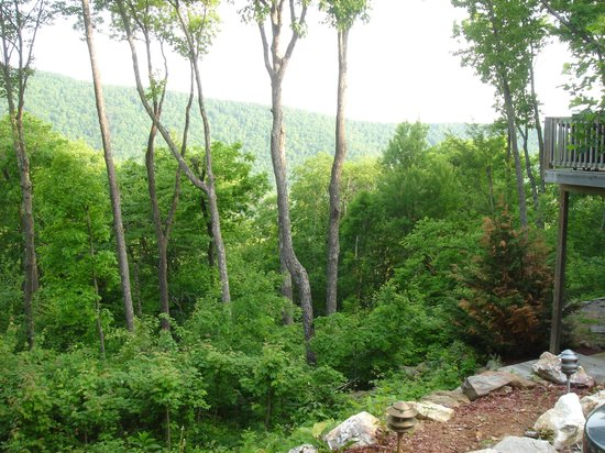 Bear Rock Ridge Bed & Breakfast: Our first view when we parked