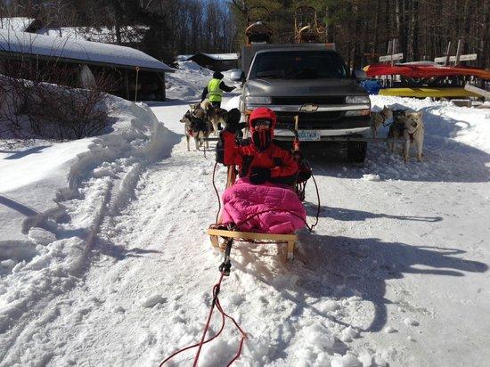 Valley Snow Dogz: Hi!
