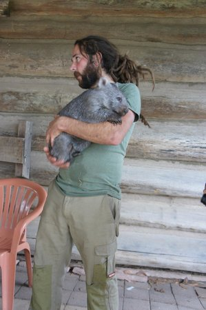Trowunna Wildlife Sanctuary: Our tour guide carrying a Wombat for us to touch & hug