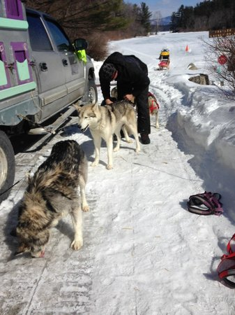 Valley Snow Dogz: checking everyone