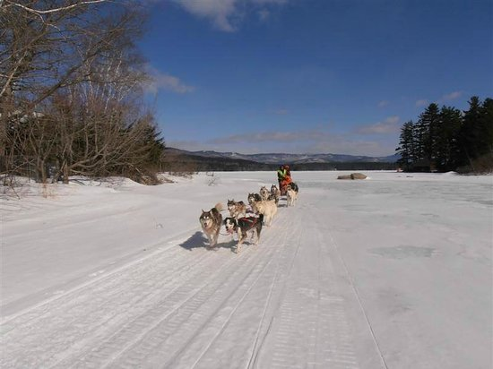 Valley Snow Dogz: Here we go!